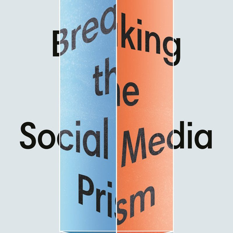 cropped image of the cover of the book Breaking the Social Media Prism